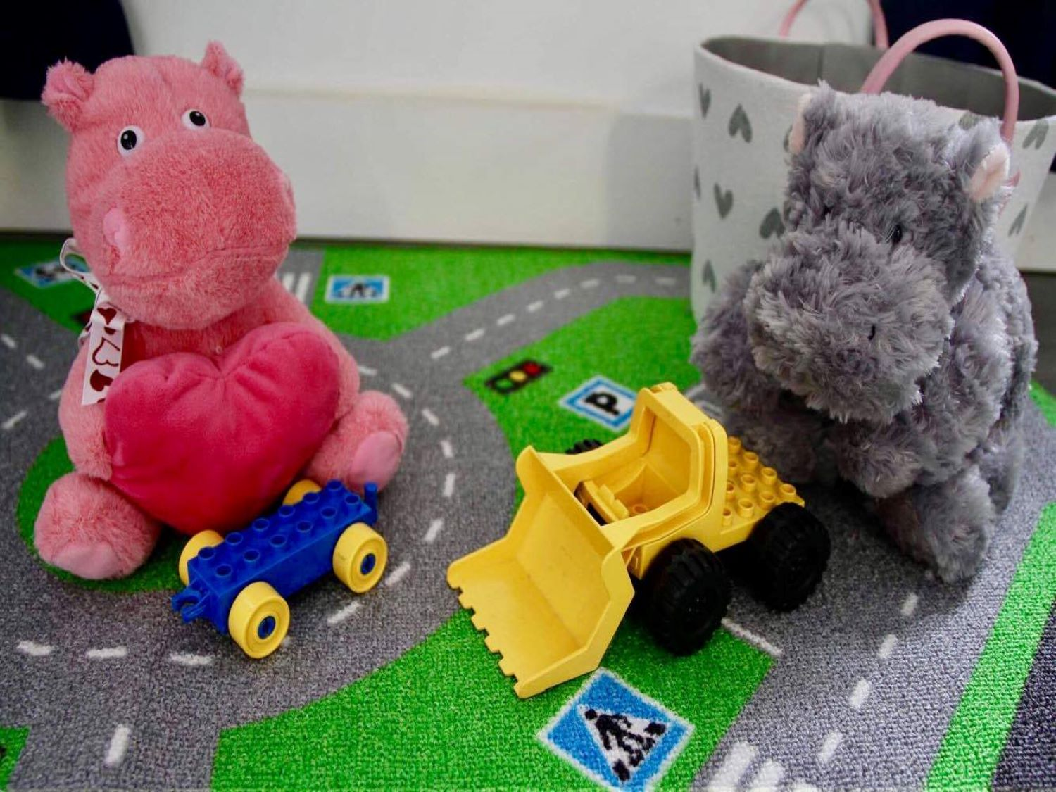 Hippos Playing at Nepean Indoor (web)